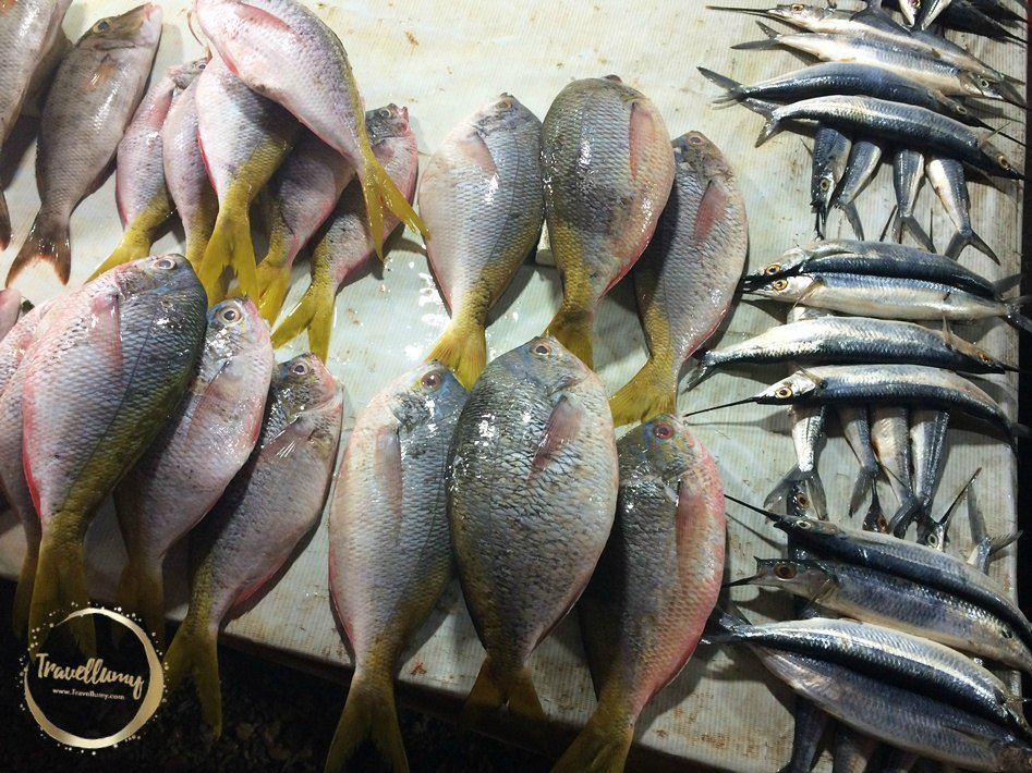 Serba Ikan Hasil Laut Indonesia